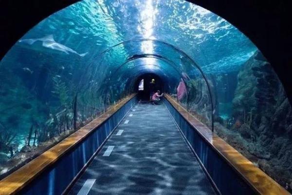 迪拜机场虚拟水族馆安检门,新颖更受欢迎